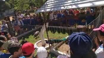 Aula campo na Fazenda Solar Caetano